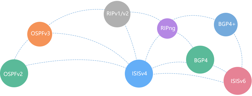 Strong Routing Capabilities, Meeting IPv4/IPv6 Network Requirements